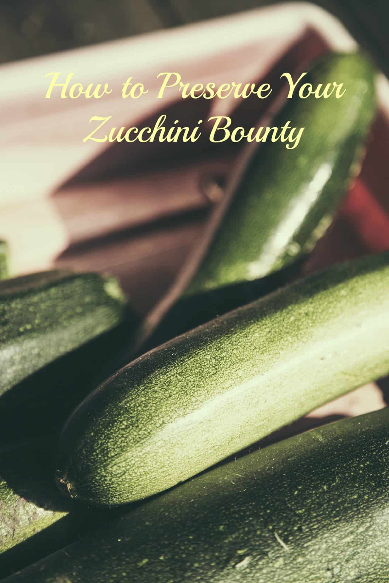 How to Preserve Your Zucchini Bounty